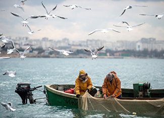 Crimea: Fishing for sea gold with a camera